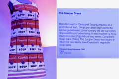 The 'Souper' dress